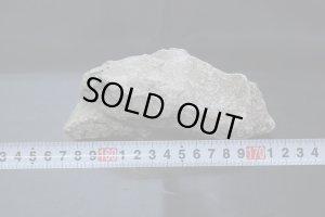 画像1: 溶岩石 (中) #0009