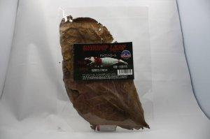 画像1: シュリンプ リーフ 17cm〜25cm 5枚入